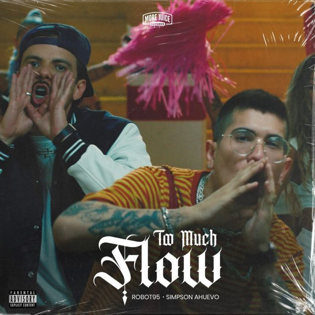 Robot95 – Too Much Flow